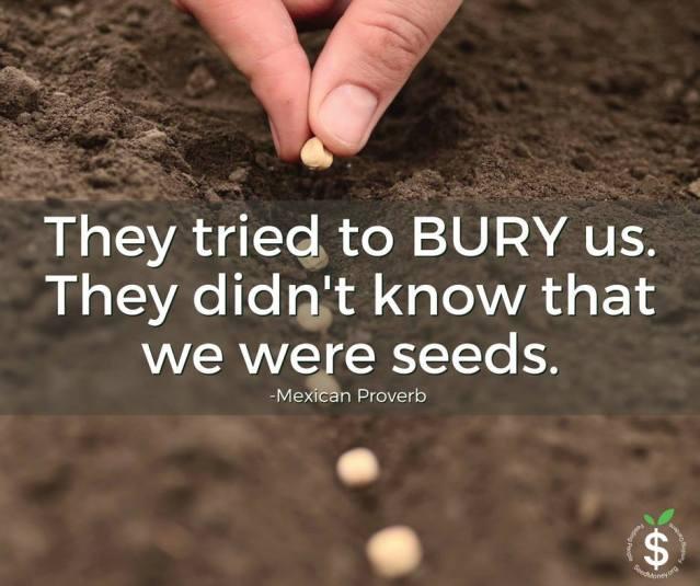 bury-us-seeds
